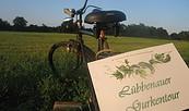 Lübbenauer Gurkentour