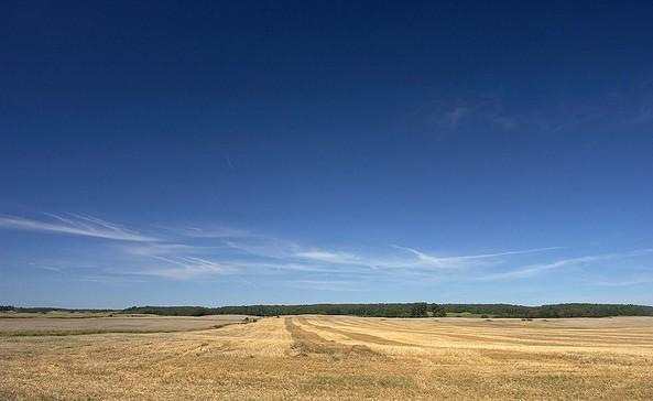 Feldflur in der Barnimer Feldmark