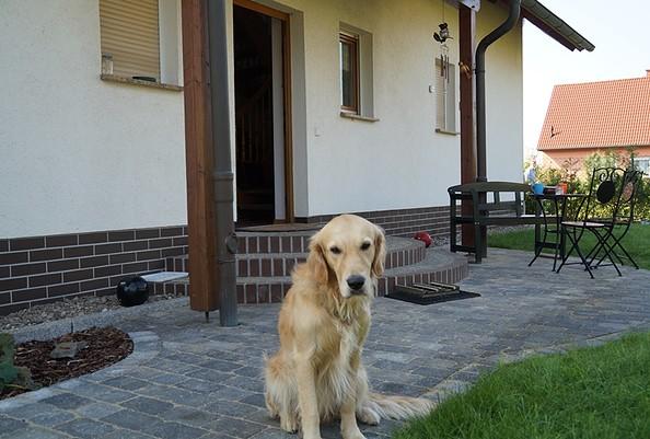 Ferienwohnung zur Kastanie mit Hund, Foto: Giard