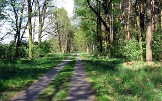 Tagestour 14 in die Historischen Stadtkerne Nauen, Kremmen & Neuruppin