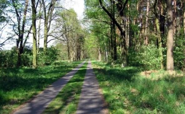 Landschaft bei Nauen