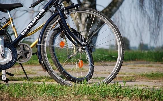 "Radtour ""Naturpark Westhavelland"""
