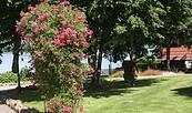 Garten mit Blick zum See