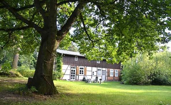 Ferienhaus Alte Linde-Außenansicht