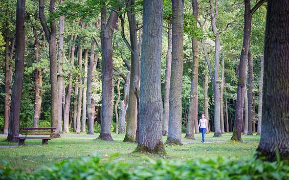 Stadtpark Fürstenwalde