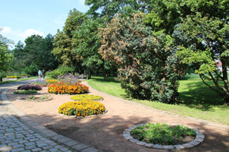 garten frankfurt, botanischer garten frankfurt (oder), seenland oder-spree, frankfurt, Design ideen