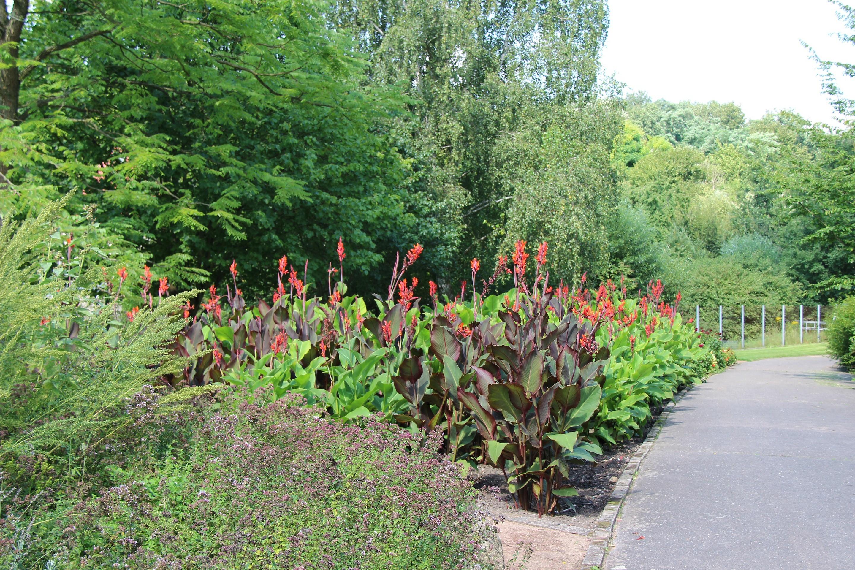 Botanischer Garten Frankfurt Oder Seenland Oder Spree Frankfurt Oder