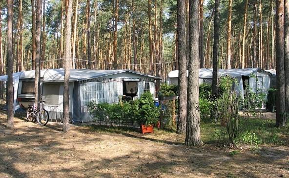 Camping mitten im Wald, Foto: ReFanCard.de