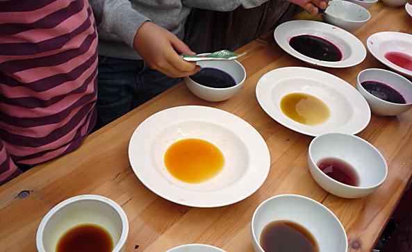 Farbfrisch - Mit Materialien direkt aus der Natur unsere Seelenkräfte wecken