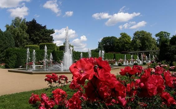 East Germany's Rose Garden Forst (Lusatia)
