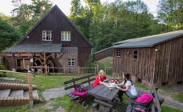 Schwerzkoer Mühle, Foto: Florian Läufer
