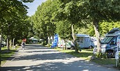 Spreewald-Camping Lübben, Foto: Steffen Lehmann, TMB