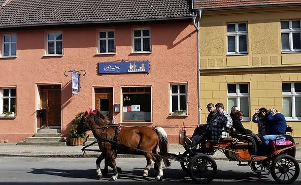 Café Avalon, Foto: Ute Zech