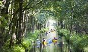 Wasserlabyrinth Spreewald, Foto: TMB-Fotoarchiv/Hahn