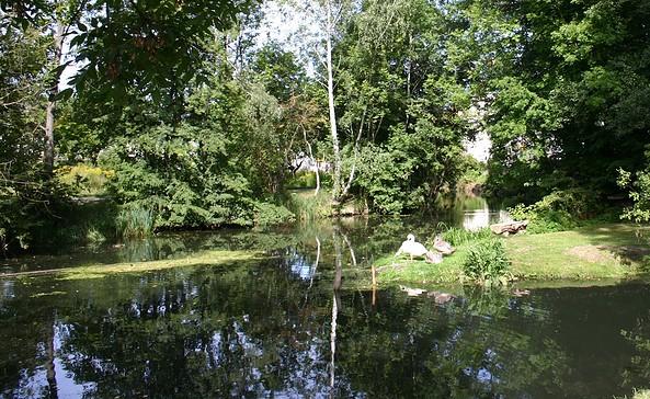 Tonsee, Foto: Tourismusverband Dahme-Seen e.V.