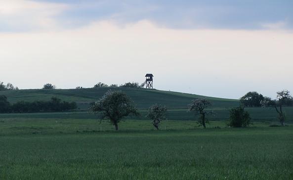 Mühlenberg bei Plattenburg, Foto: LfU Biwer