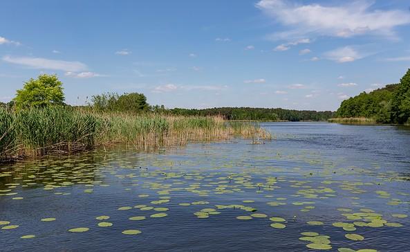 Flusslandschaft Spree, Foto: Seenland Oder-Spree/Florian Läufer