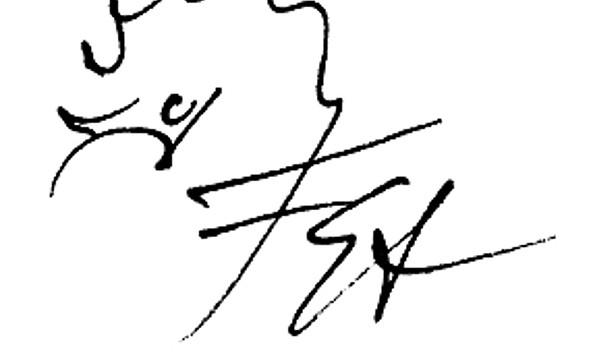Igel, Friedrich Stachat