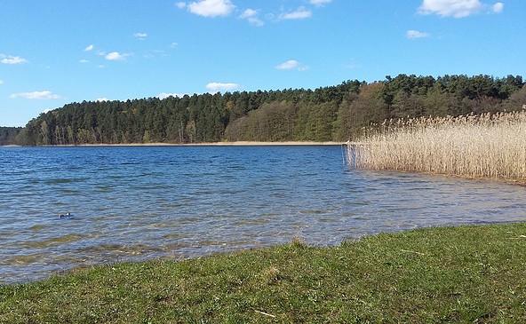 Foto : Tourismusverband Ruppiner Seenland e.V.