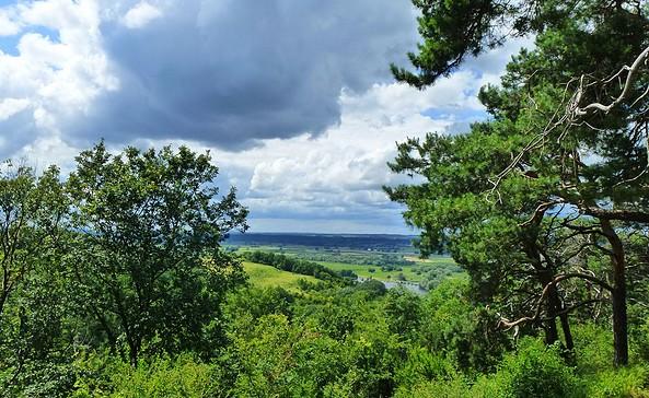 Aussicht von Gedenkhöhe auf die Oder, Foto: NaturFreunde Oberbarnim-Oderland e.V.