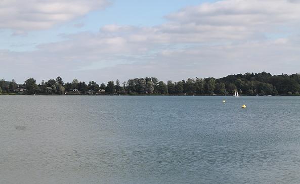 Blick auf den Schwielochsee, Foto:TEG