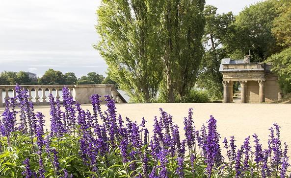 Blütenmeer am Heiligen See in Potsdam, Foto: ScottyScout