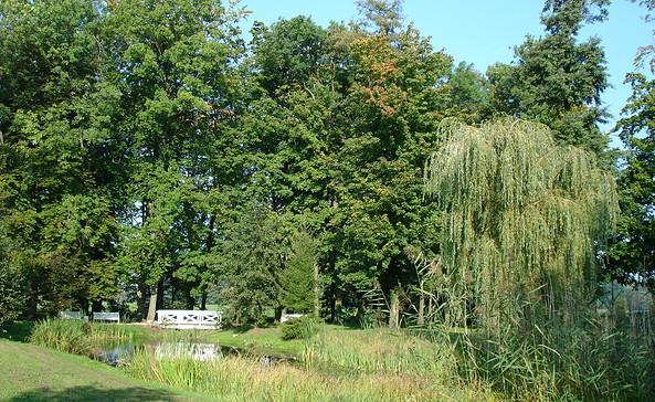 Der Schlosspark Meyenburg