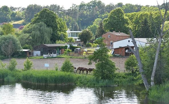 Reiterhof am Oderstrom, Foto: A. Warning