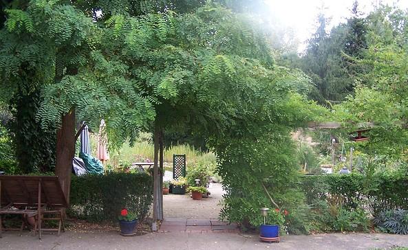 Garten mit Teich, Foto: Petra Puls