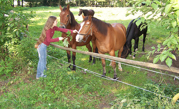 Mädchen mit Pferde, Foto: Tourismusverband Dahme-Seen e.V.