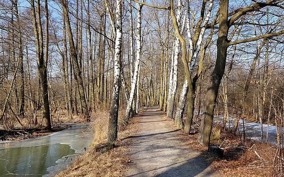 Spreewald-Rundtour um Lübbenau