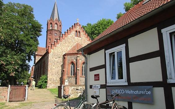 Infopunkt Weltnaturerbe Buchenwald Grumsin