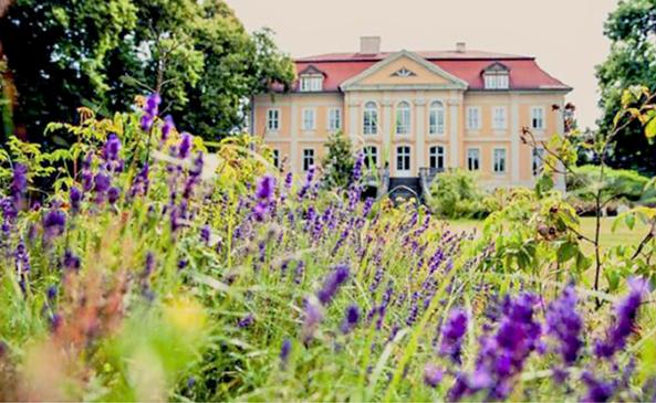 Schloss Stülpe im Sommer, Foto: Darek Gontarski