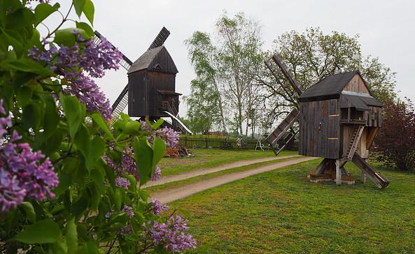 Bockwindmühle Beelitz, Foto: Tourismusverband Fläming e.V.
