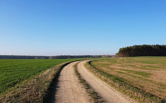 Niederlausitzer Landrücken: Von Uckro nach Walddrehna