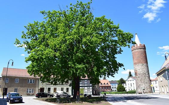 Heilig-Geist-Platz Jüterbog
