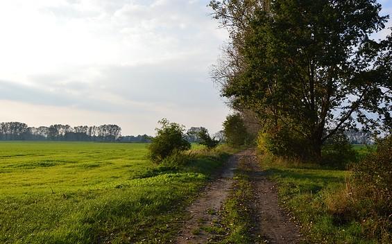 Deichwanderung entlang der Havel