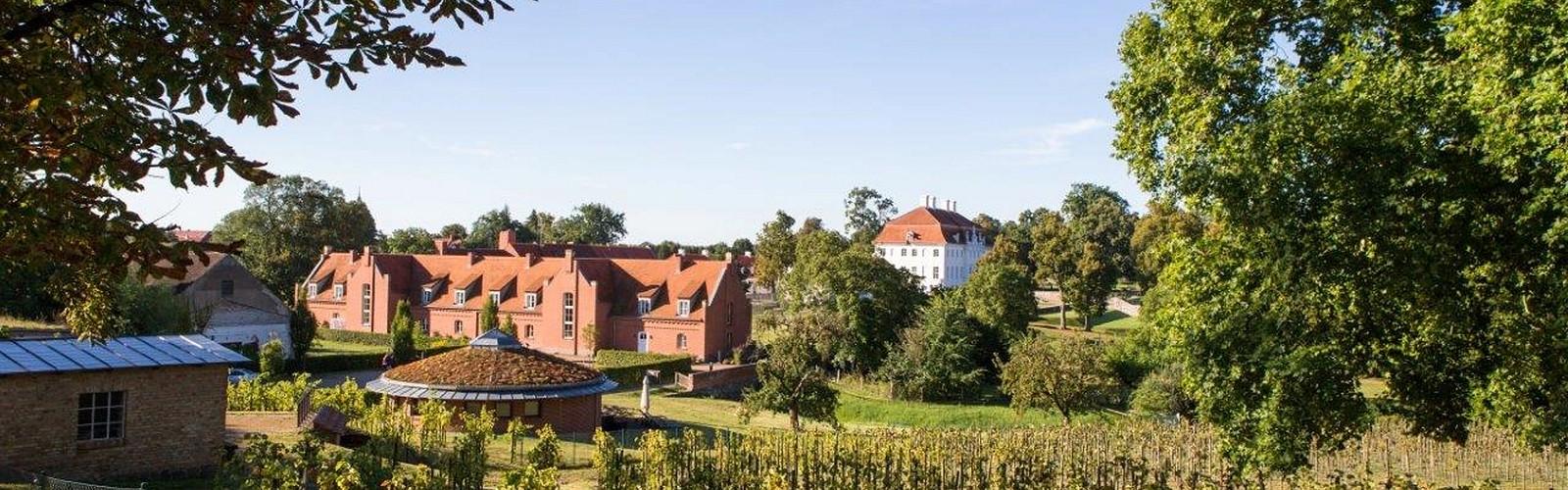 View from the vineyard, photo: Schlosswirt Meseberg