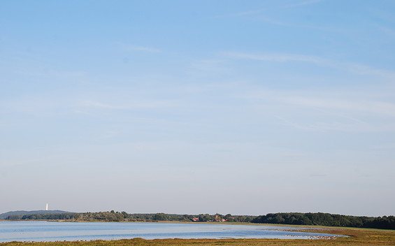 Vogelbeobachtungsturm - Gülper See