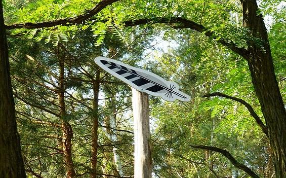 Lesefährte Waldweisen - Wanderung durch den Naturpark Dahme-Heideseen