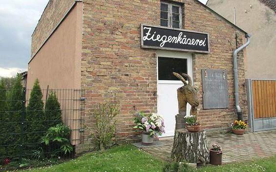 Ziegenhof Pörschke - Biolandbau mit Hofkäserei