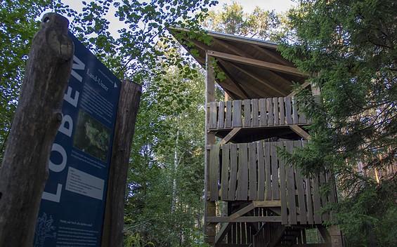 """Lobenturm am Naturschutzgebiet """"Loben"""""""
