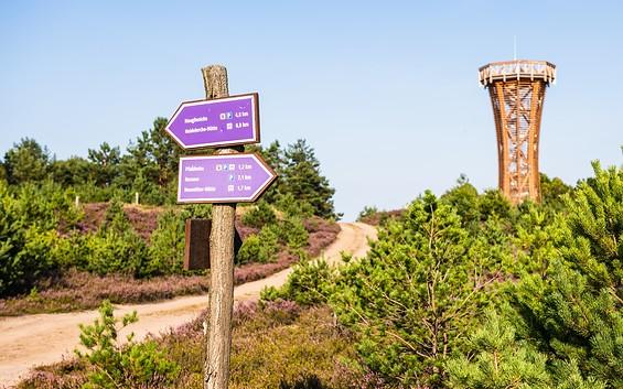Heide-Erlebnisweg