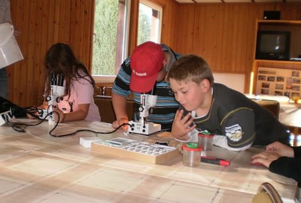 Kinder beim Mikroskopieren © Thomsdorf