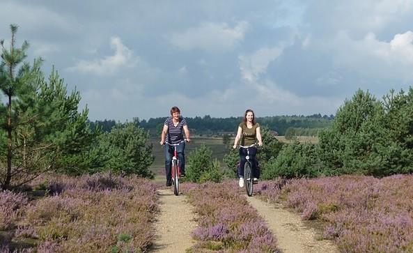 Mit dem Fahrrad durch den Naturpark Niederlausitzer Heidelandschaft, Foto: Dietmar Seidel