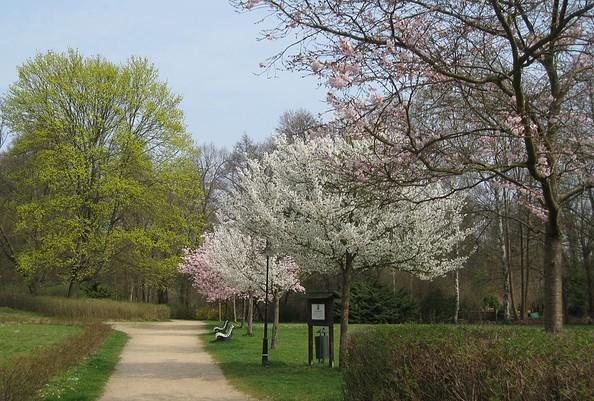 Schlosspark Buckow, Foto: Archiv Kultur- und Tourismusamt Märkische Schweiz