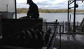 Fischer bei der Arbeit vor dem Seddiner See, Foto: TMB-Fotoarchiv_K. Lehmann