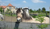 Permakulturhof Stein-Häger, Foto: tmu GmbH