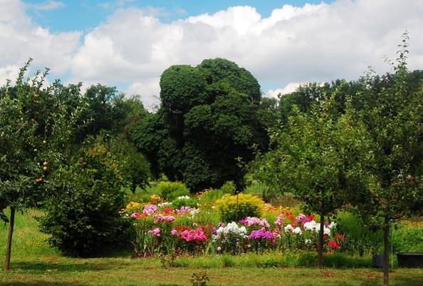 Garten in der Siedlung Alexandrowka © TMB-Archiv Kolbmüller
