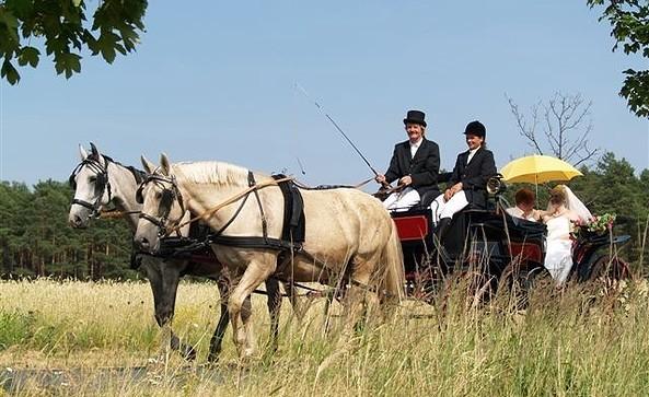 Bergranch Nitzsche - Hochzeitskutsche